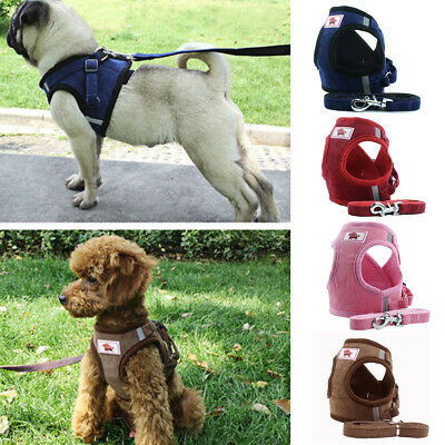 Dog Harness Lead Leash Mesh Vest Travel Padded Seat Belt For Small to Medium Dog