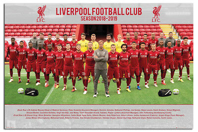 Laminated Liverpool FC Poster 2018 2019 Team Photo 18 19 Squad Official New
