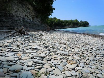 Natural Lake Flat Gray Grey Round Oval Beach Pebbles Stones Rocks For PAINTING