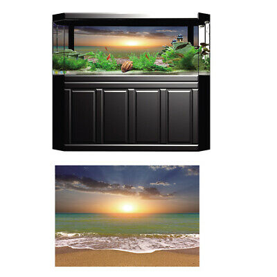 3D Aquarium Background HD Beach Sunshine Fish Tank Picture Decoration