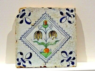 17thC Dutch DELFT TILE polychrome tulips showing bulb 1620-1640 botanical flower