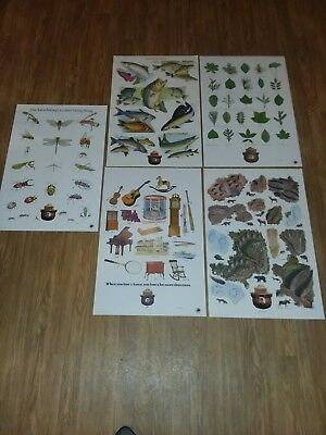 "Vintage Smokey Bear Educational Posters Lot Of 5    20""x30"""