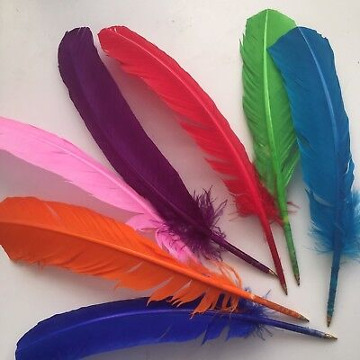 Colour Turkey Feather Quill Ball Point Pen Wedding, Harry Potter