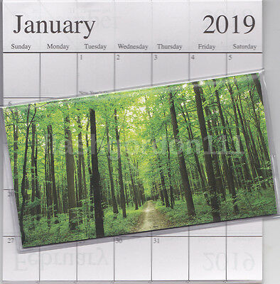 1 - 2019-2020 GREEN FOREST 2 Two Year Planner Monthly Pocket Calendar Datebook
