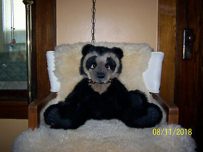 Charlie Bears Shades the Spectacled Bear is just Adorable.  Shades is BNWT & Bag