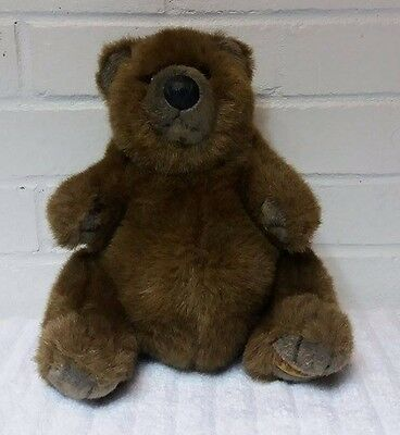 Pot Belly Bear Fancy Zoo Stuffed Animal Plush Brown                        (A18)