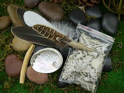 Smudging Kit  Feather Wand Small Abalone Shell 76mm White Sage Palo Santo Smudge
