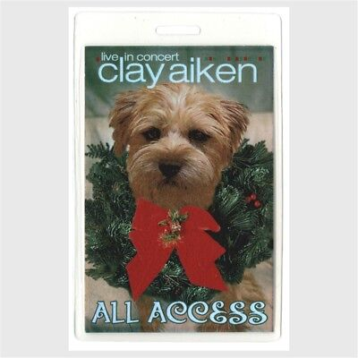 Clay Aiken 2004 concert Laminated Backstage Pass Joyful Noise Tour American Idol