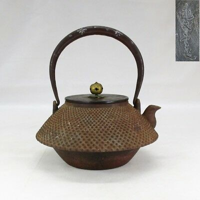 A431: Japanese iron kettle TETSUBIN w/ARARE and silver inlay by famous RYUBUN-DO