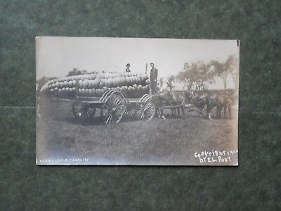 RP Post Card  L85908  Novelty Large Ear of Corn, Connecticut Products  c-1909