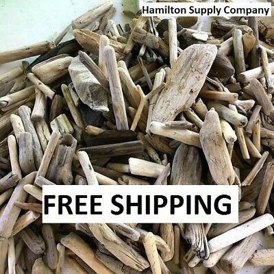 BULK WHOLESALE Small Medium Large DRIFTWOOD Pieces of Driftwood ~YOU CHOOSE SIZE