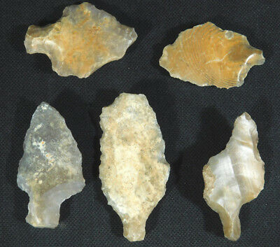 A Lot of 55,000 to 12,000 Year Old Early MAN Aterian Lithic Artifacts! 74.6gr e