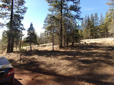 Modoc County BUY 1 LOT GET 2 FREE!!!. 3.3 ACRES TOTAL . Need em Gone!
