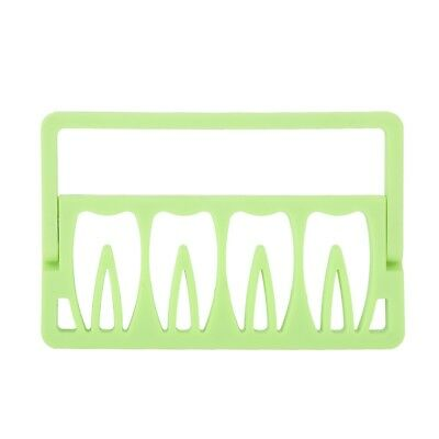 Endo Files Holder Dental Root Canal File Holder Measuring Instrument Green