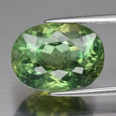 9.95ct 14.8x11mm Oval Natural Unheated Green Apatite, Brazil