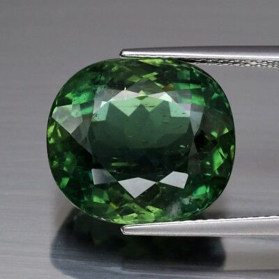 12.32ct 14.4x13mm Oval Natural Unheated Green Apatite, Brazil