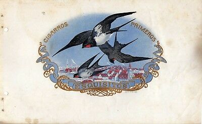 Very Rare Cigarboxlabels  Swallow 1900