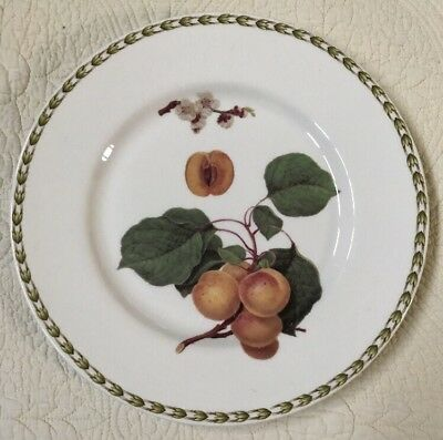 """QUEEN'S Fine China PLATE HOOKERS FRUIT Apricots Royal Horticultural 10.5"""""""
