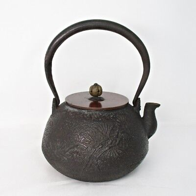 A348: Japanese iron kettle TETSUBIN with very good relief of pine and Kanji