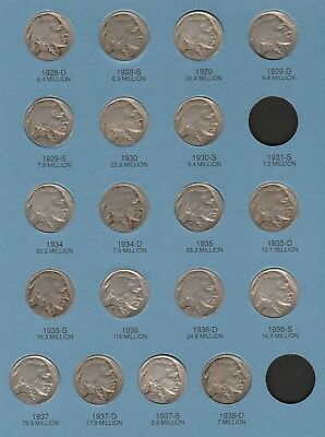 """1913-1938 set of Buffalo Nickel """"Circ-XF"""" *Free S/H After 1st Item*"""