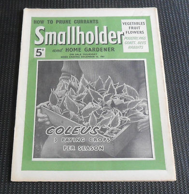 Smallholder and Home Gardener Magazine, December 16th 1961