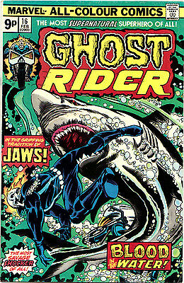 GHOST RIDER #16 & #19 (Mv) 2 VF/NM Johnny Blaze. Gil Kane-c/Tuska/Colleta-a 1976