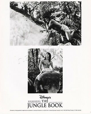 Disney Live Action The Jungle Book Movie 1 BW Photo 4 Color Slides Production Bk