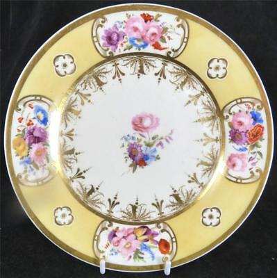 N831 C1820 ANTIQUE ENGLISH PORCELAIN PLATE HAND PAINTED FLOWERS YELLOW BORDER d