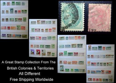 Stamp Collection British Colonies New Zealand India N. S. W. Dominica Ceylon Ext