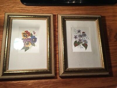 2 Vtg Art Matching Picture Frames with Botanical Prints in them will hold 5x7's!