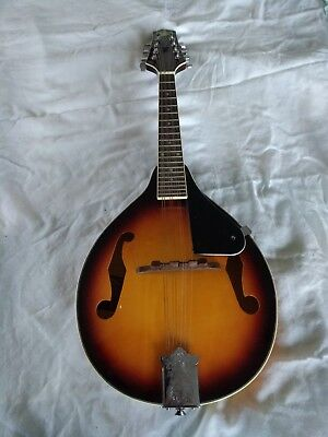 Rogue RM-100A  Mandolin A Style Sunburst-Gently used good condition
