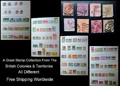 Stamp Collection British Colonies New Zealand India Victoria Dominica Ceylon Ext