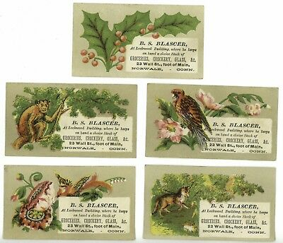 Lot of 5 Animals Holly BS Blascer Norwalk CT Victorian Trade Calling Cards