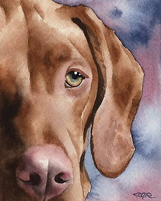 HUNGARIAN VIZSLA Painting Dog 8 x 10 ART Print Signed DJR