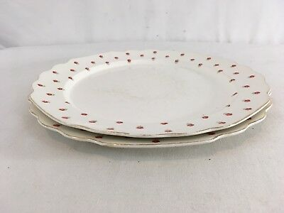 "Vtg Lido W.S. George Blushing Rose Flower USA Made 10.5"" Lot of 2 Dinner Plates"