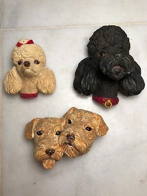 Bossons Chalkware Poodles and Airdale-Lot Of 3
