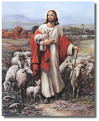 Jesus The Shepherd holding Lamb With Sheep In Meadow  Wall Art Print Picture