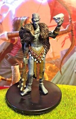 Conna the Wise D&D Miniature Dungeons Dragons pathfinder stone giant ogre rpg Z