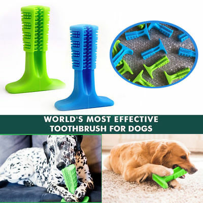 Pet Brushing Stick Bristly Toothbrush For Dog Oralcare World's Most Effective US