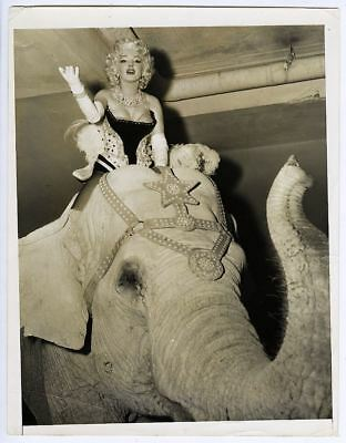 MARILYN MONROE & pink elephant at Madison Square Garden in N. York City, 1955.
