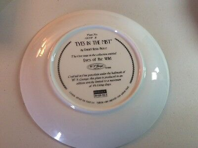 Eyes Of The Wild Series Collector Plate EYES IN THE MIST By Daniel Renn Pierce