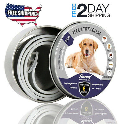 Bayer Seresto Flea and Tick Collar for Large Dog (Over 18lbs) 8 Month Protection