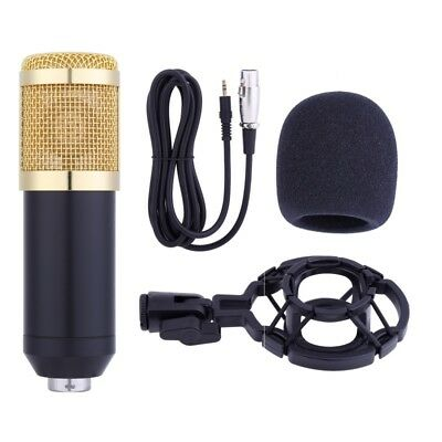 Neewer NW-800 Studio Broadcasting Recording Microphone W/ Foam Shock Mount Cable