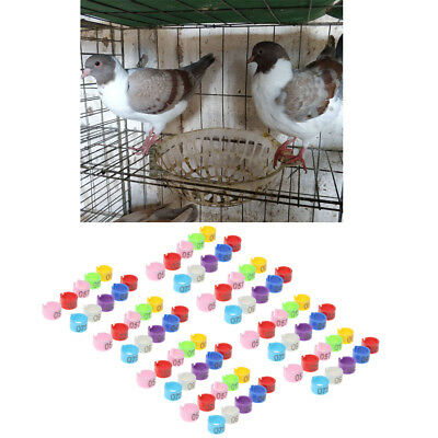 MagiDeal 50x Bird Rings Colorful Leg Bands for Pigeon Parrot Hatch Poultry