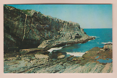 Classic Postcard Bald Head Cliff -  York, Maine  2Fifty Sale