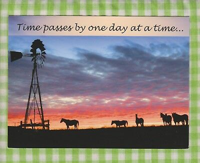 Pasture at Sunset HORSES & WINDMILL Birthday Card - CURRENT USA INC