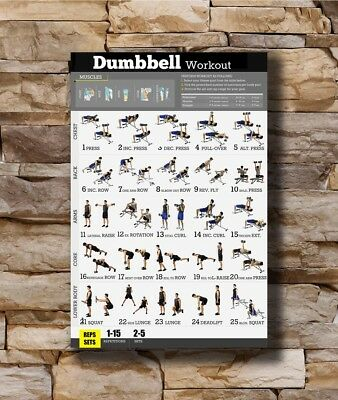 Art Poster New Dumbbell Workout Exercise Body Strength  -20x30 24x36In N361