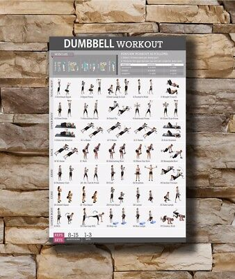 Art Poster New Dumbbell Workout Body Exercise Health Chart -20x30 24x36In N571