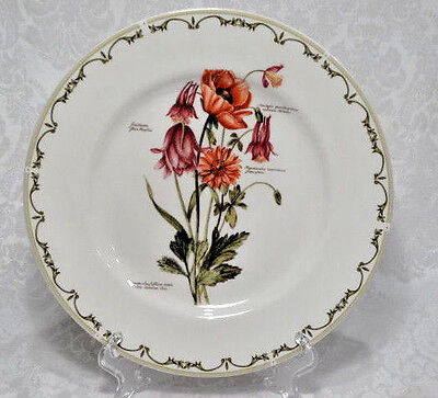 """Queen's Fine China India,  Botanical 10.5"""" Round Dinner Plate"""