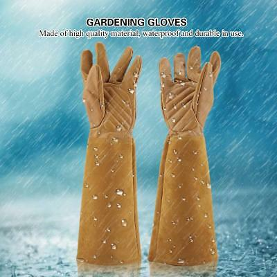 Rose Plants Pruning Gardening Gloves Puncture Thorn Proof Long Gloves Trimming